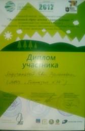 мой диплом участника городского конкурса Экоплакатов