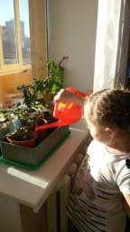 Помогаю маме поливать цветы