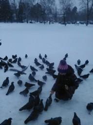 Кормим птичек :)